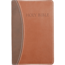 KJV Easy Reading Bible (Brown/Brown Leathersoft, Large Print)