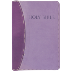KJV Easy Reading Bible (Purple/Purple Leathersoft, Large Print, Thumb Index)