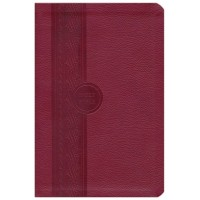 MEV Thinline Reference Bible, Cranberry