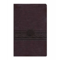 MEV Personal Size Large Print Bible Cherry Brown Indexed