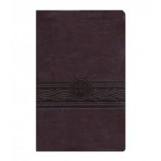MEV Personal Size Large Print Bible Cherry Brown