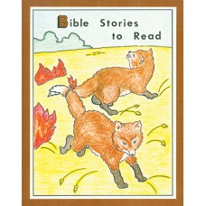 Bible Stories to Read (ABC Series)