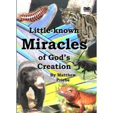 Little Known Miracles of God's Creation