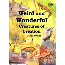 Weird and Wonderful Creatures of Creation