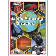 Lifes Amazing Miracles