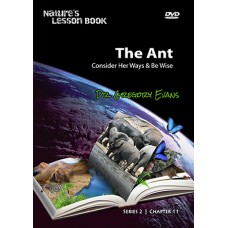 Nature's Lesson Book - The Ant (Chapter 11)